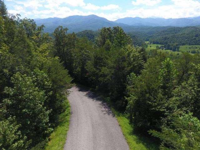 Riversong Way Way, Sevierville, TN 37876 (#1047475) :: Billy Houston Group