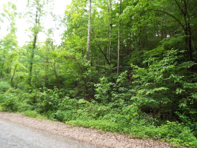 Lot 0005 Emerald Springs Loop Rd, Sevierville, TN 37862 (#1047492) :: Billy Houston Group