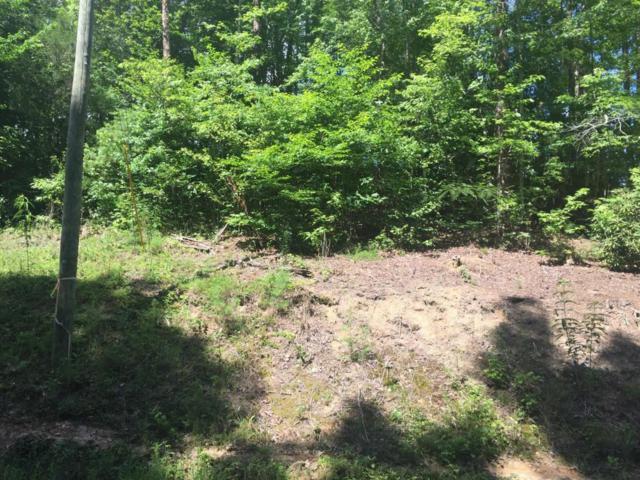 Whisper Creek Lane, Sevierville, TN 37862 (#1047519) :: Billy Houston Group