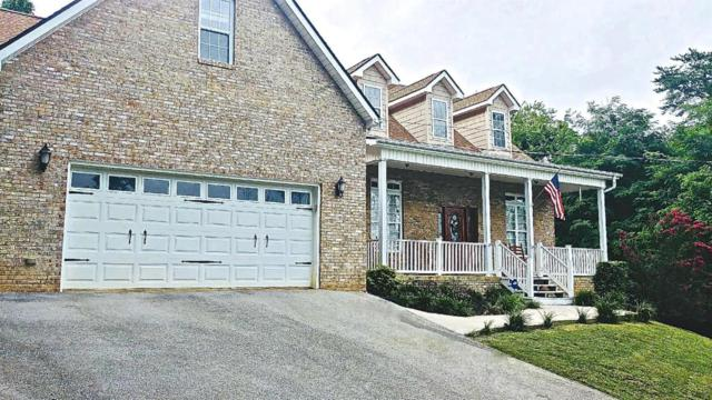 110 Walk In The Trees Drive, New Market, TN 37820 (#1047576) :: Billy Houston Group
