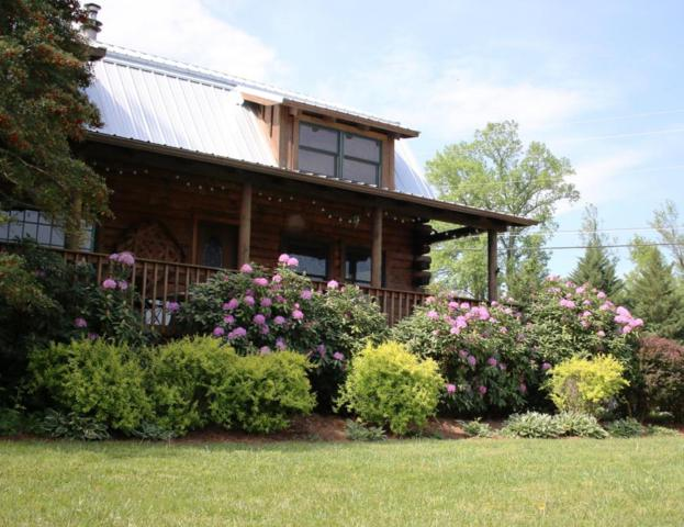 3509 Ginseng Way, Sevierville, TN 37862 (#1047619) :: Billy Houston Group