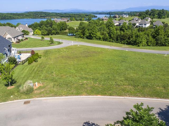131 White Hawk Drive, Vonore, TN 37885 (#1047738) :: SMOKY's Real Estate LLC