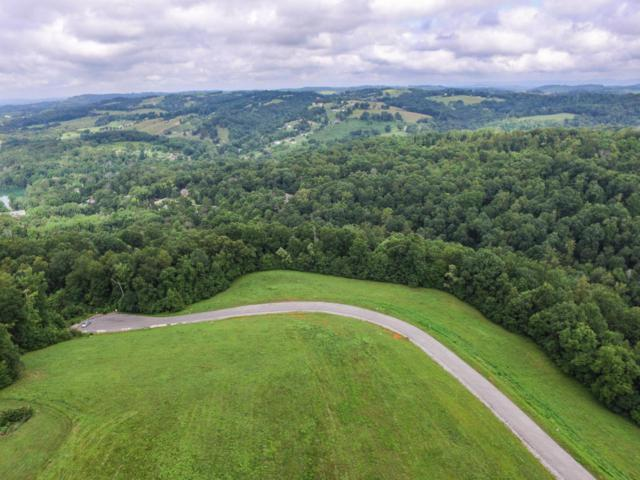 Marble Point Way, New Tazewell, TN 37825 (#1047833) :: CENTURY 21 Legacy