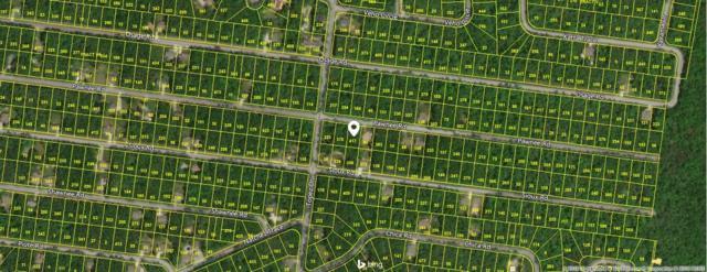 5304 Pawnee Rd, Crossville, TN 38572 (#1047860) :: Billy Houston Group