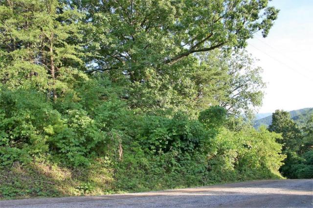 Ridge Walk Rd, Cosby, TN 37722 (#1047913) :: Billy Houston Group