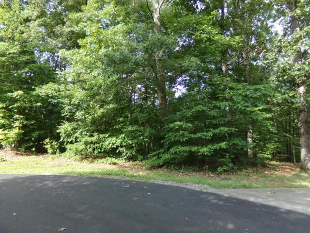 214 Kawatuska Lane, Loudon, TN 37774 (#1047918) :: Shannon Foster Boline Group