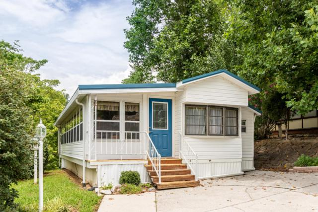 403 Mountain Thrush Drive, Townsend, TN 37882 (#1048004) :: SMOKY's Real Estate LLC