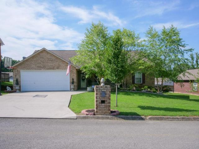 6706 Casa Bella Drive, Knoxville, TN 37918 (#1048076) :: Billy Houston Group