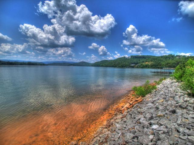 Lot 429 Pointe Vista Drive, Rockwood, TN 37854 (#1048213) :: Shannon Foster Boline Group