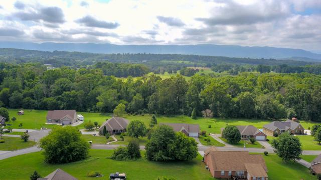 441 Lager Drive, Maryville, TN 37801 (#1048426) :: Billy Houston Group