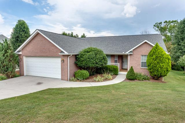 7530 Wilderness Path Rd, Corryton, TN 37721 (#1048481) :: Shannon Foster Boline Group