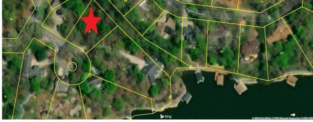 202 Tigitsi Place, Loudon, TN 37774 (#1048495) :: Billy Houston Group