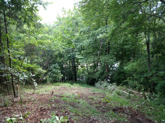 Lone Mountain Shores Rd, New Tazewell, TN 37825 (#1048546) :: Billy Houston Group