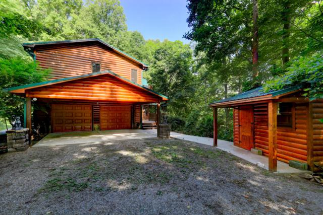 246 Running Deer, Caryville, TN 37714 (#1048598) :: Shannon Foster Boline Group