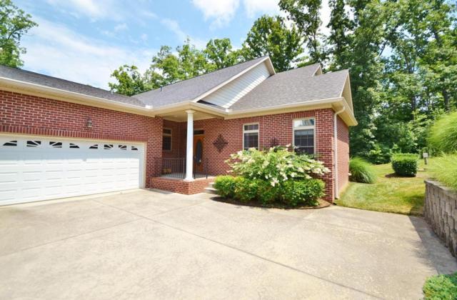 2462 Mountain Drive, Lenoir City, TN 37772 (#1048638) :: SMOKY's Real Estate LLC