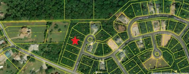 106 Wapiti Lane, Loudon, TN 37774 (#1048709) :: Billy Houston Group