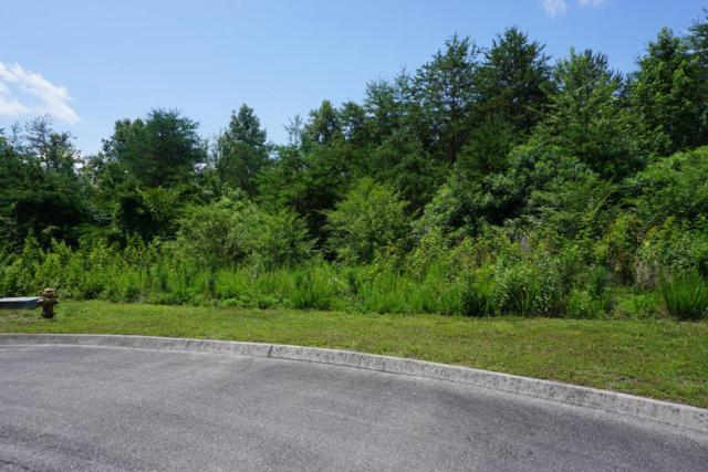 Lot 76 Creekside Drive, Harriman, TN 37748 (#1048831) :: Billy Houston Group