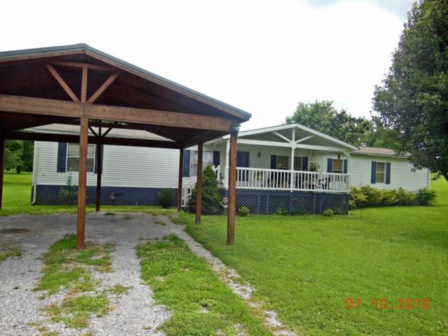 516 Co Rd 709, Riceville, TN 37370 (#1048939) :: Billy Houston Group