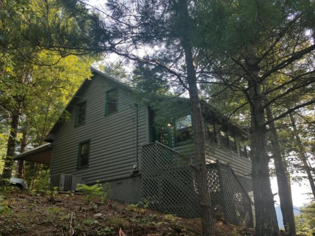 202 Brighton Tr, Townsend, TN 37882 (#1049016) :: SMOKY's Real Estate LLC