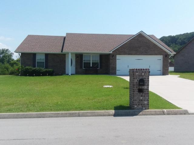 6601 Mission Springs Lane, Corryton, TN 37721 (#1049060) :: Shannon Foster Boline Group