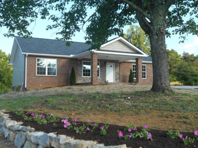 1001 Briar Ridge Lane, Strawberry Plains, TN 37871 (#1049132) :: Billy Houston Group