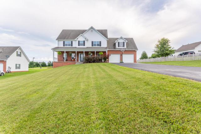 405 Lorne Lane, Blaine, TN 37709 (#1049141) :: Billy Houston Group