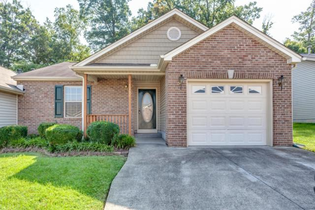 8062 Pepperdine Way, Knoxville, TN 37923 (#1049145) :: Billy Houston Group