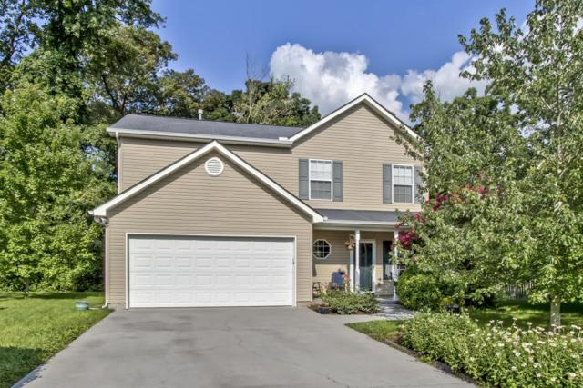 2300 Slate Valley Lane, Knoxville, TN 37923 (#1049174) :: Billy Houston Group