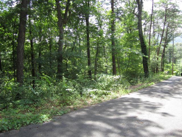 Lot 9-A Pine Mountain Rd, Pigeon Forge, TN 37863 (#1049190) :: The Terrell Team