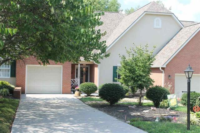 360 Paine Lake Drive, Sevierville, TN 37862 (#1049207) :: The Terrell Team