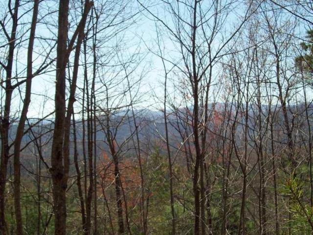 Caney Branch Rd, Tellico Plains, TN 37385 (#1049297) :: Billy Houston Group