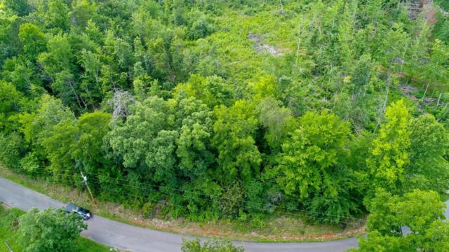 Lot 2 Tomahawk Drive, Cosby, TN 37722 (#1049375) :: Cindy Kraus Group | Realty Executives Associates