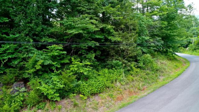 Lot 3 Tomahawk Drive, Cosby, TN 37722 (#1049376) :: Billy Houston Group