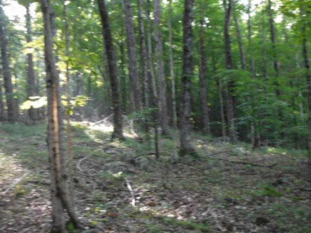 6.71ac Cherokee Drive, Cookeville, TN 38506 (#1049416) :: Billy Houston Group