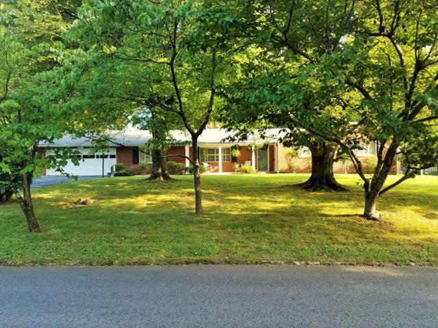 8204 Bennington Drive, Knoxville, TN 37909 (#1049418) :: Billy Houston Group