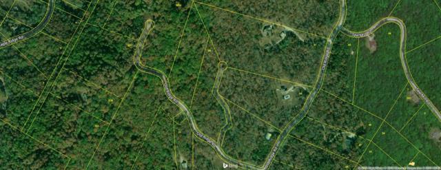 228 Old Ridge Rd, Kingston, TN 37763 (#1049439) :: Billy Houston Group