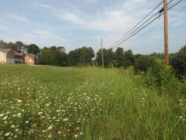 Lot 18 Nails Creek Rd, Seymour, TN 37865 (#1049530) :: SMOKY's Real Estate LLC
