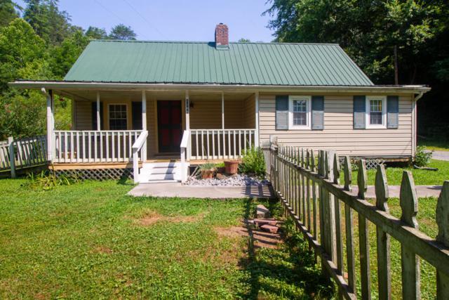 1148 Pine Hollow Way, Sevierville, TN 37876 (#1049621) :: The Terrell Team