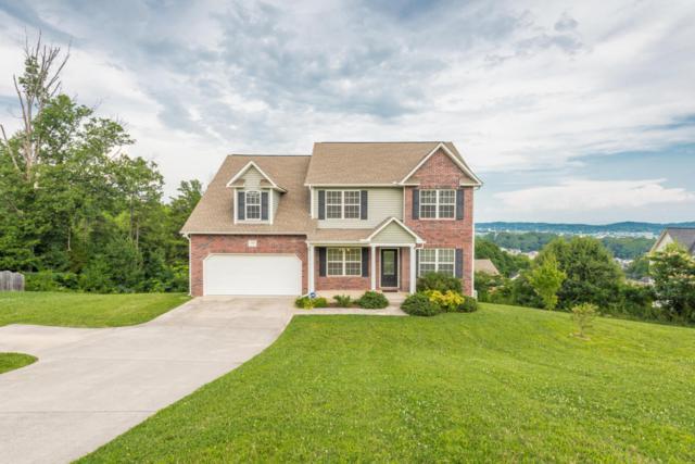 1164 Snyder Ridge Lane, Knoxville, TN 37932 (#1049625) :: Billy Houston Group