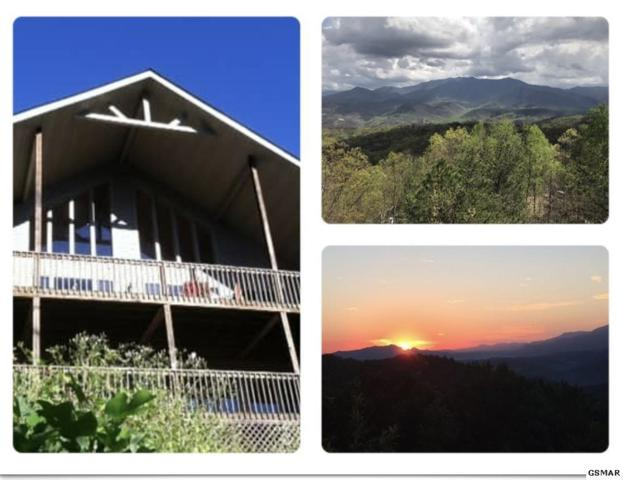 1433 Garrett Place, Gatlinburg, TN 37738 (#1049629) :: The Terrell Team