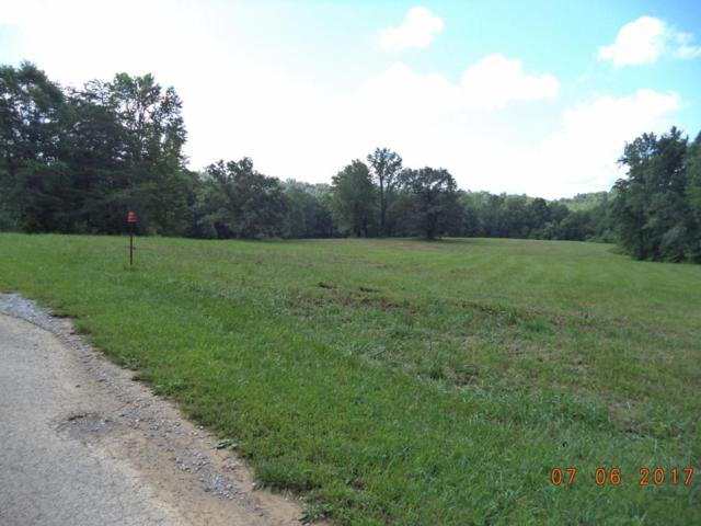 Bear Hollow Rd, Oneida, TN 37841 (#1049717) :: Billy Houston Group