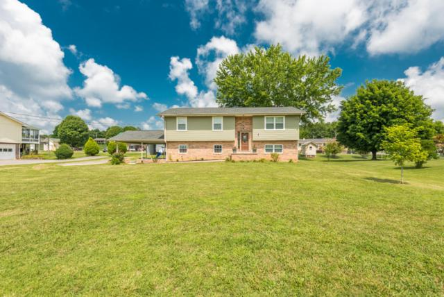 1624 Tazewell Pike, Corryton, TN 37721 (#1049740) :: Shannon Foster Boline Group
