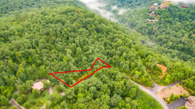 Lot 61 Cedar Falls Way, Sevierville, TN 37862 (#1049742) :: Billy Houston Group