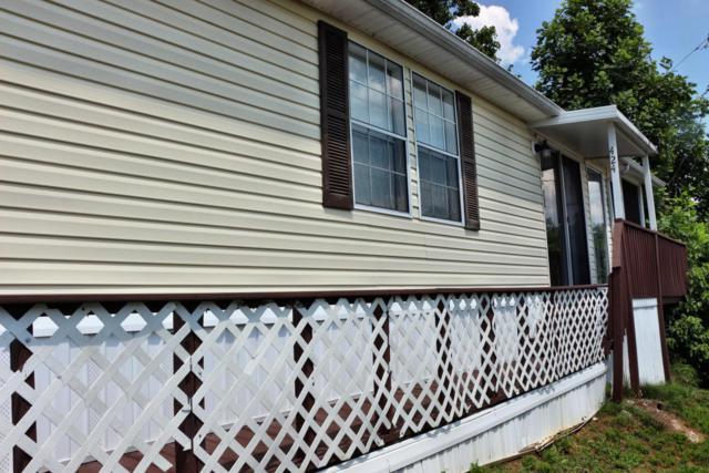424 Mountain Thrush Drive, Townsend, TN 37882 (#1049752) :: SMOKY's Real Estate LLC