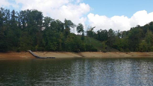 Lot 26 Stone Shore Way, Dandridge, TN 37725 (#1049762) :: Billy Houston Group