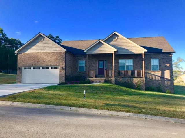 515 Ivey Vine Drive, Maryville, TN 37801 (#1049765) :: Billy Houston Group