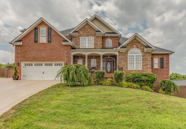 500 Calthorpe Lane, Knoxville, TN 37912 (#1049811) :: Billy Houston Group