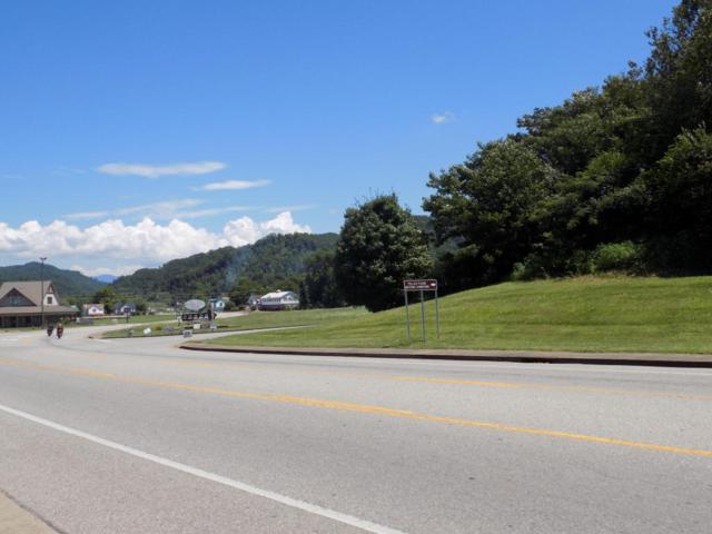 Cherohala Skyway, Tellico Plains, TN 37385 (#1049814) :: SMOKY's Real Estate LLC