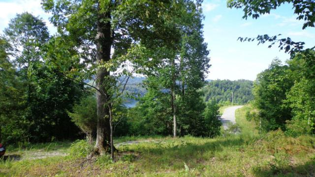 L 555 Whiste Valley Rd, New Tazewell, TN 37825 (#1049840) :: Billy Houston Group