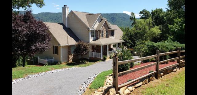 293 Mountain Ridge Way, Walland, TN 37886 (#1049861) :: Billy Houston Group